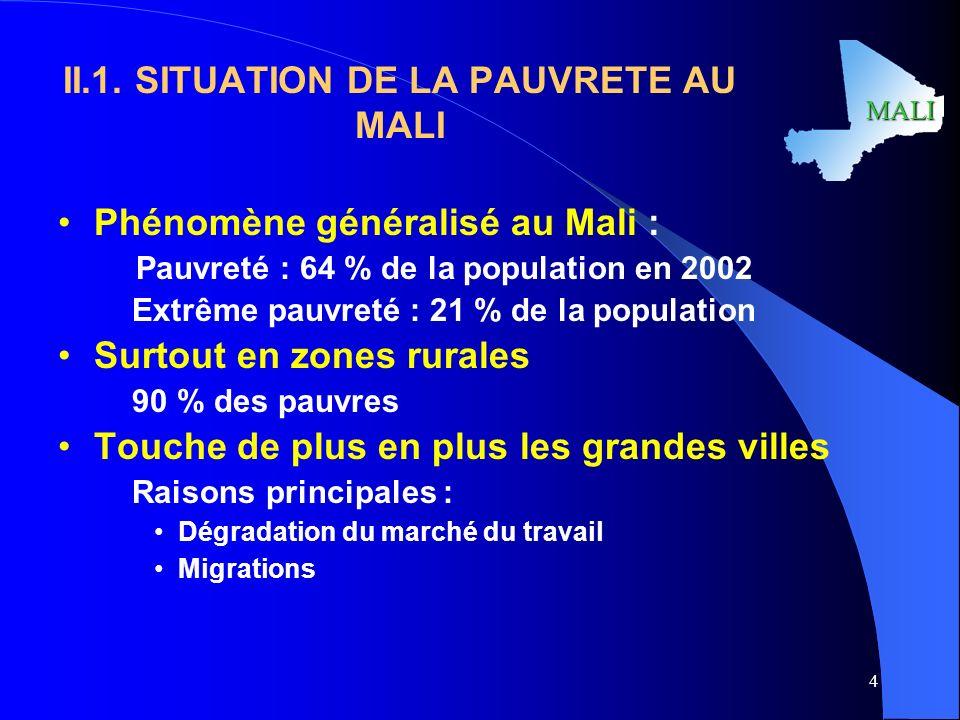II.1. SITUATION DE LA PAUVRETE AU MALI