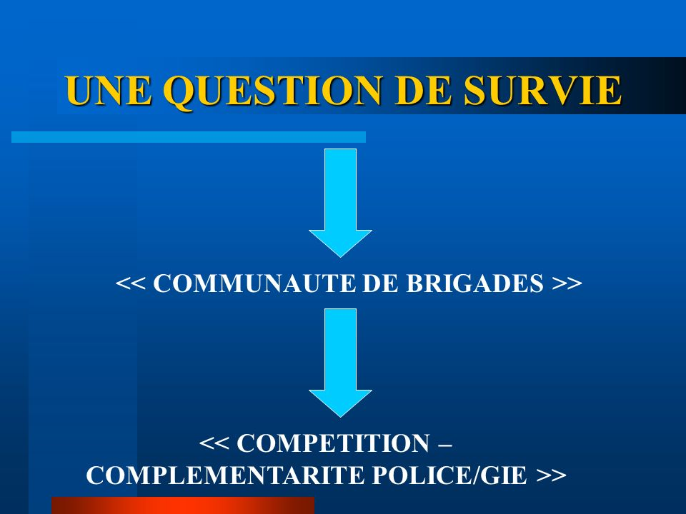 UNE QUESTION DE SURVIE << COMMUNAUTE DE BRIGADES >>
