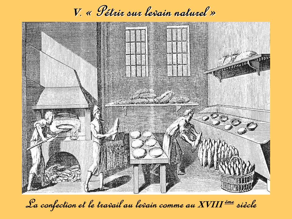 V. « Pétrir sur levain naturel »