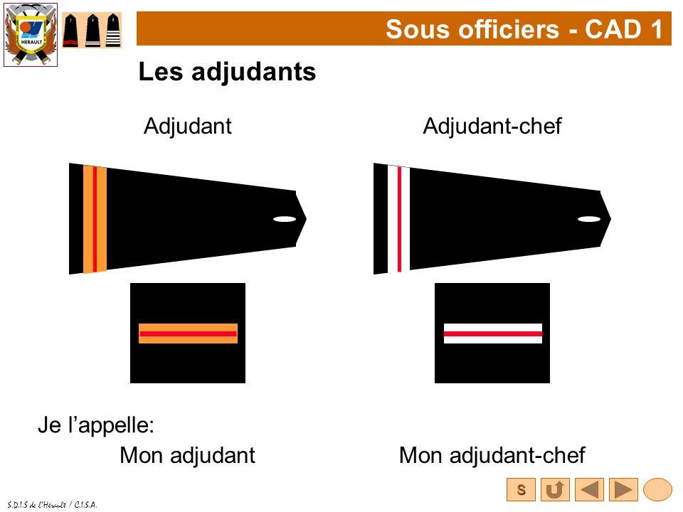 Sous officiers - CAD 1 Les adjudants Adjudant Adjudant-chef