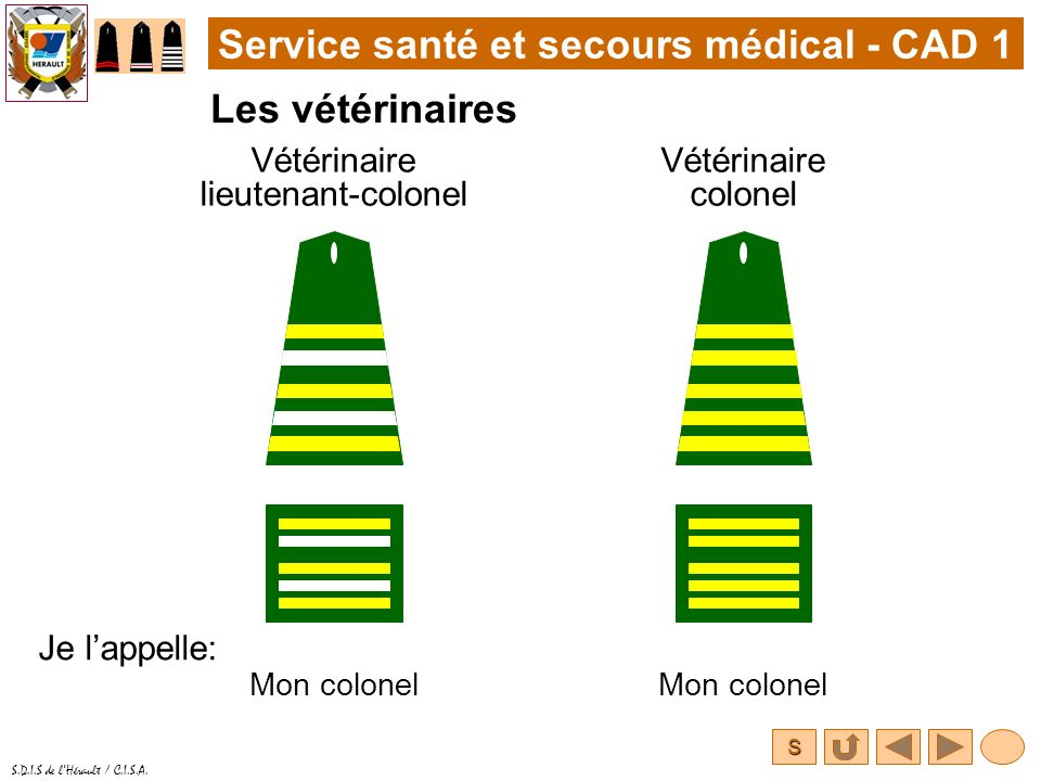 Vétérinaire lieutenant-colonel