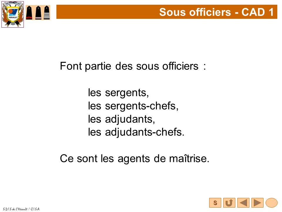 Sous officiers - CAD 1 Font partie des sous officiers : les sergents, les sergents-chefs, les adjudants,