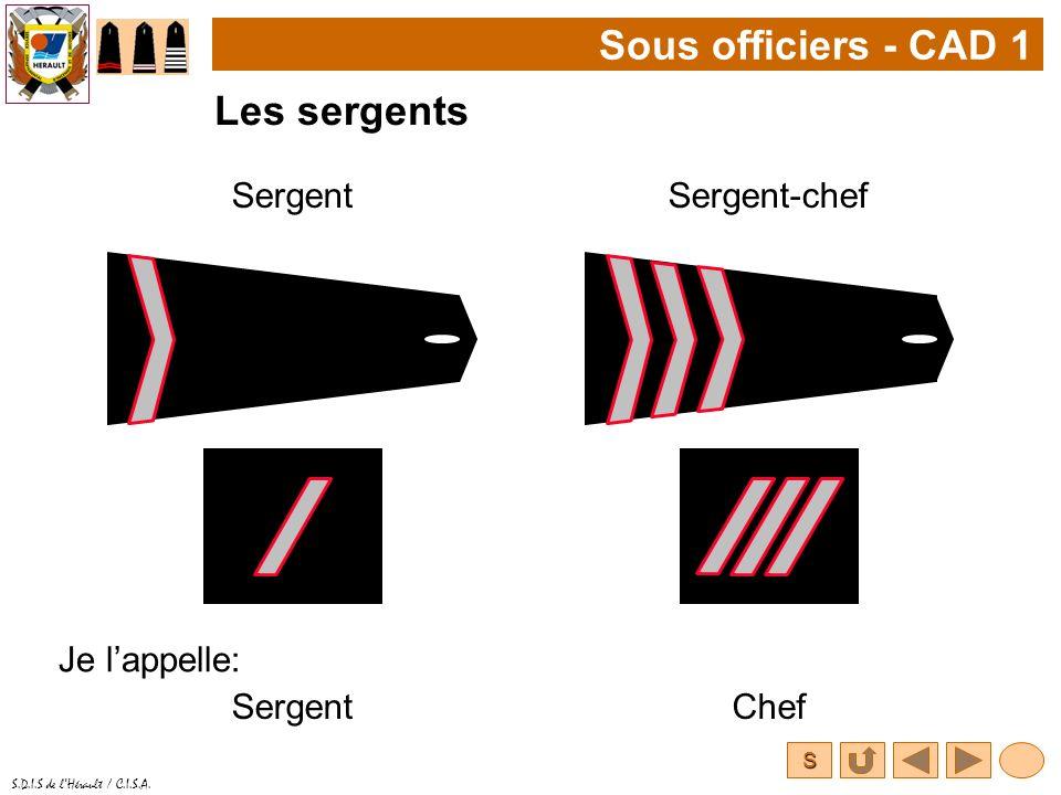 Sous officiers - CAD 1 Les sergents Sergent Sergent-chef Je l'appelle: