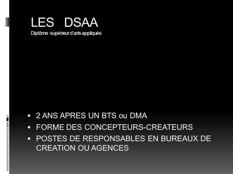 LES DSAA Diplôme supérieur d'arts appliqués