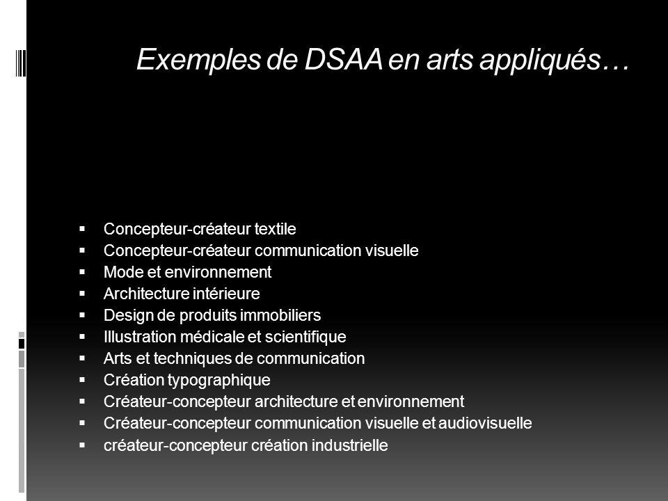Exemples de DSAA en arts appliqués…