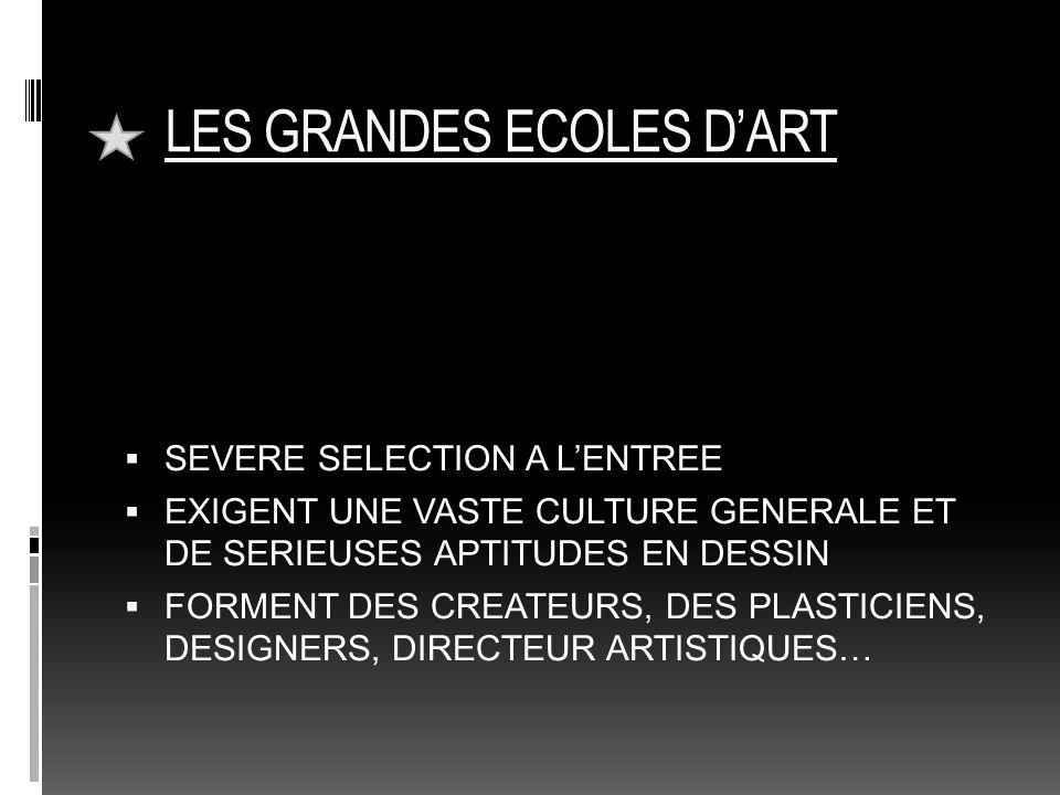 LES GRANDES ECOLES D'ART