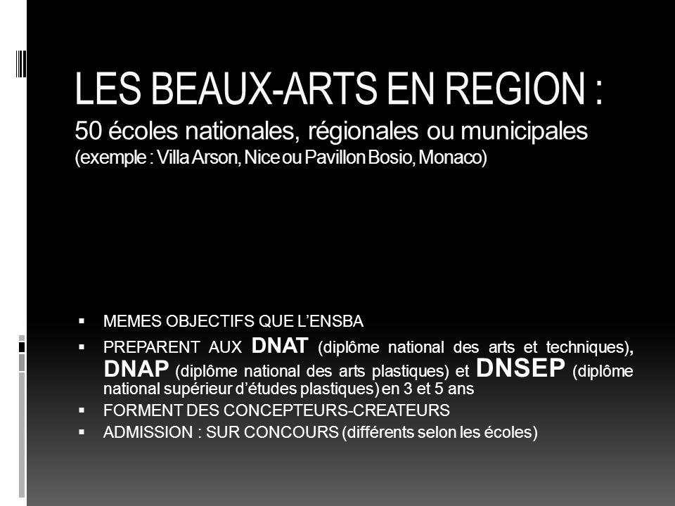 LES BEAUX-ARTS EN REGION : 50 écoles nationales, régionales ou municipales (exemple : Villa Arson, Nice ou Pavillon Bosio, Monaco)