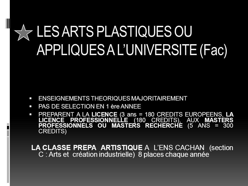 LES ARTS PLASTIQUES OU APPLIQUES A L'UNIVERSITE (Fac)