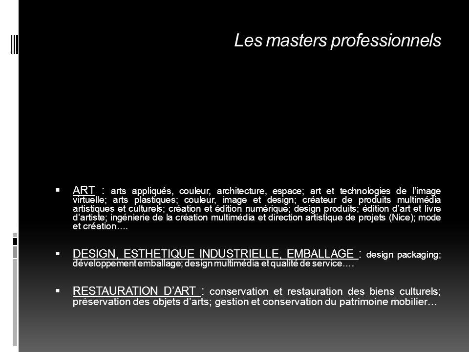 Les masters professionnels