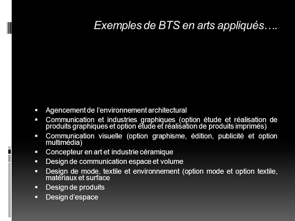 Exemples de BTS en arts appliqués….