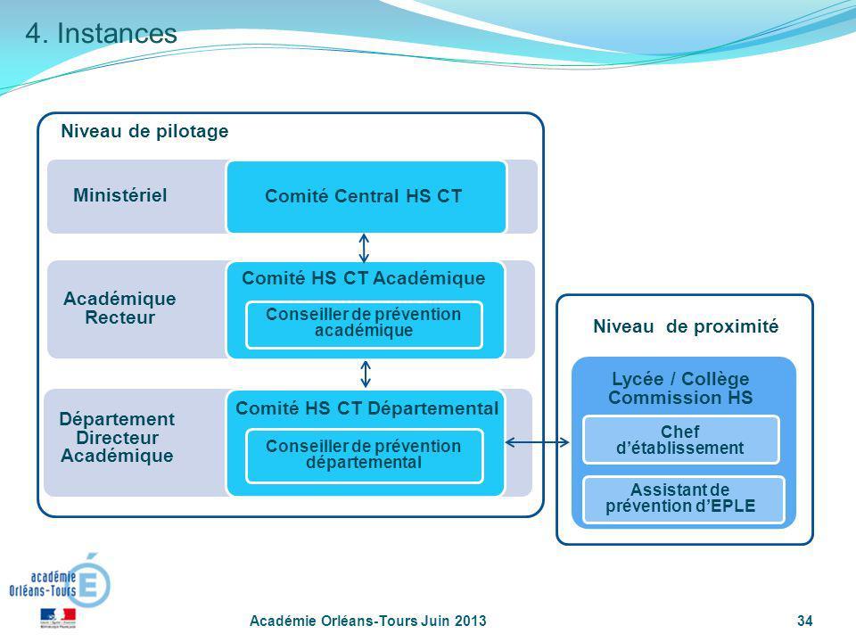 4. Instances Niveau de pilotage Ministériel Comité Central HS CT