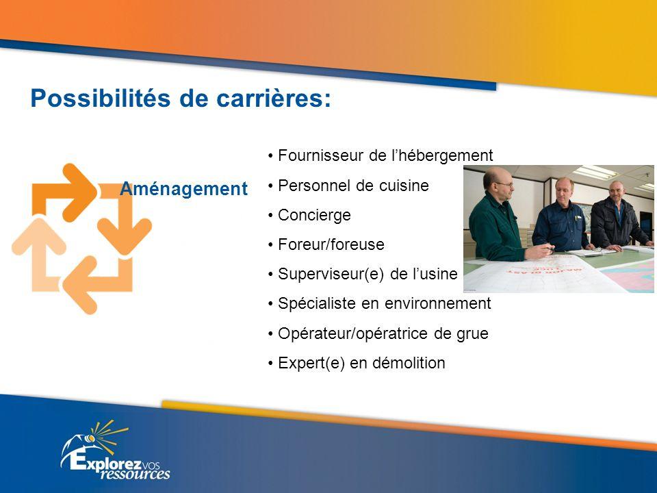 Possibilités de carrières: