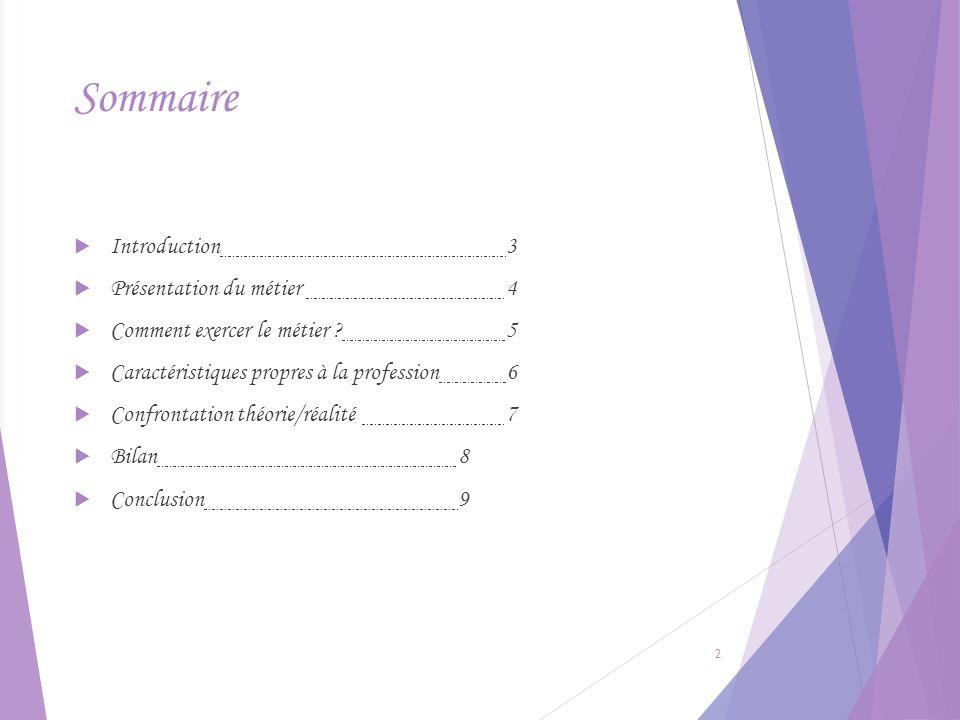 Sommaire Introduction 3 Présentation du métier 4