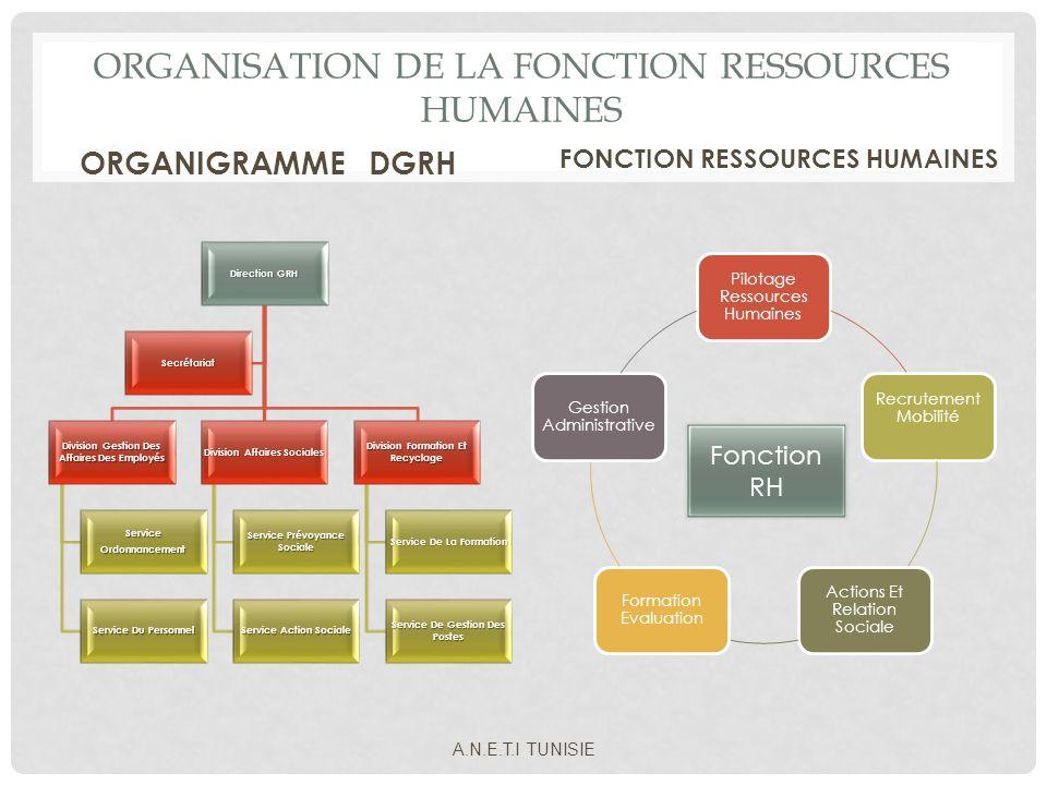 ORGANISATION DE LA FONCTION RESSOURCES HUMAINES