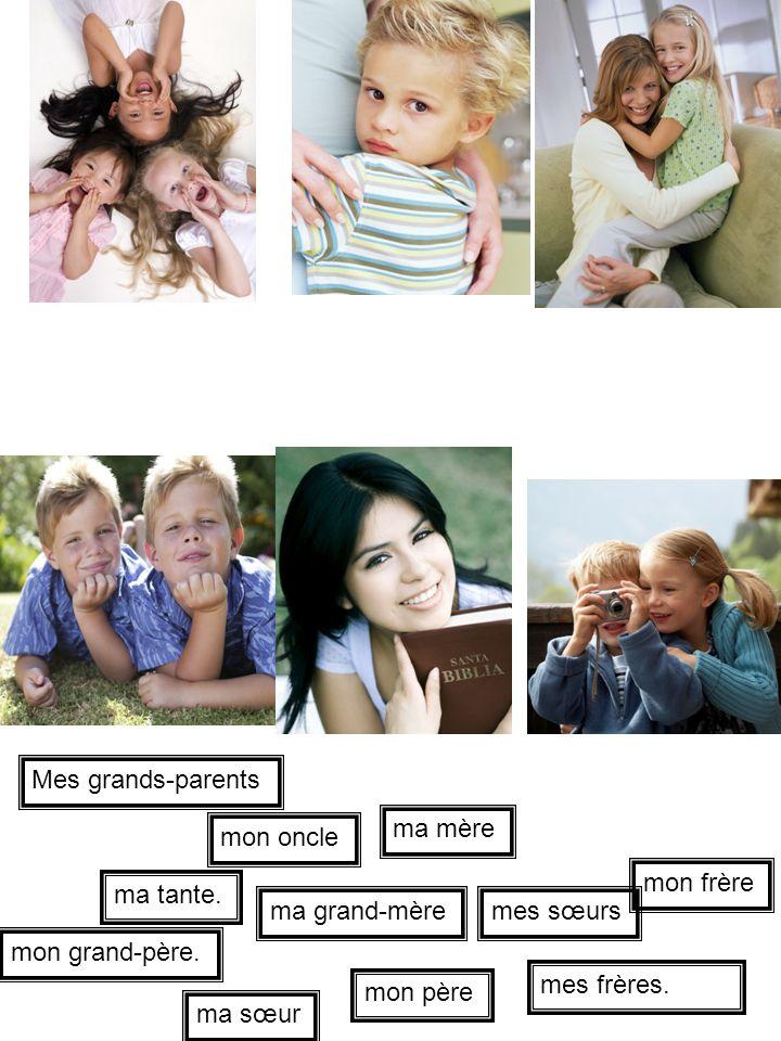 Mes grands-parents ma mère. mon oncle. mon frère. ma tante. ma grand-mère. mes sœurs. mon grand-père.