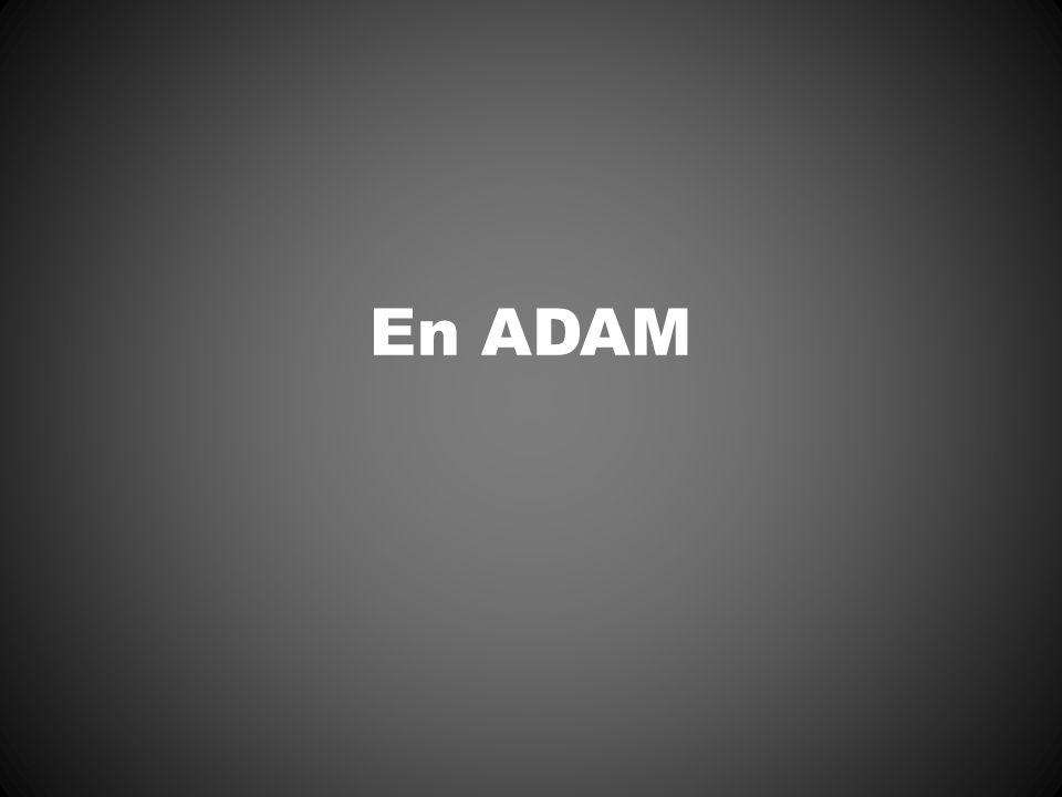 En ADAM Image du grand-père (mort à 3 ans)
