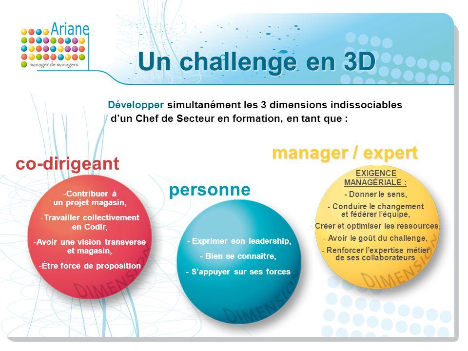 Un challenge en 3D manager / expert co-dirigeant personne
