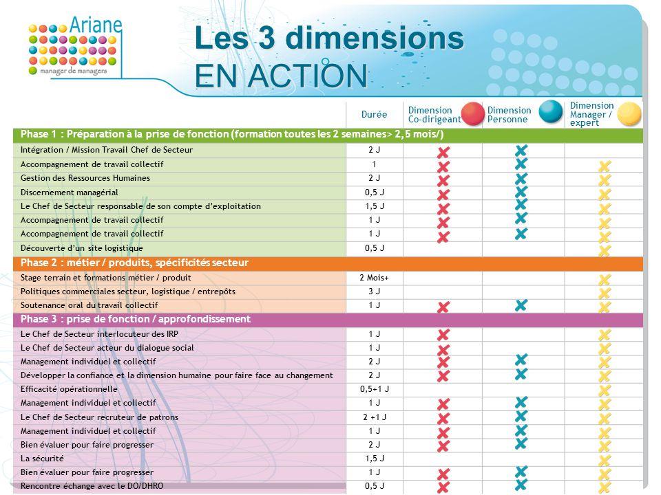 Les 3 dimensions EN ACTION
