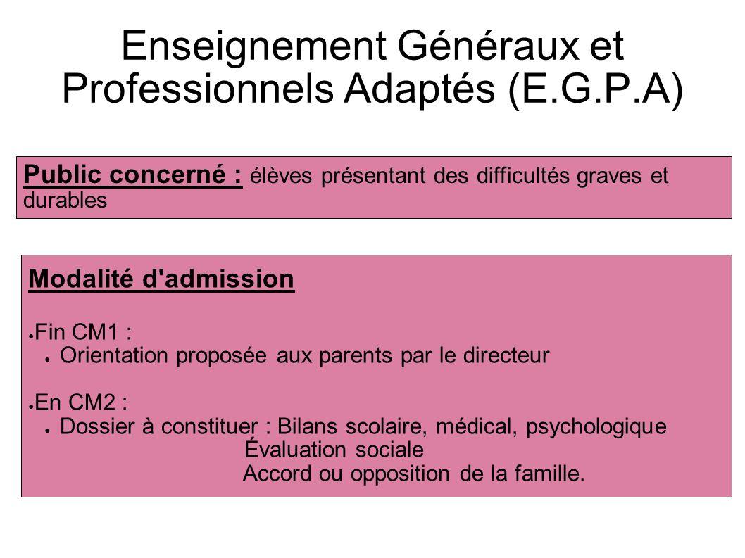 Enseignement Généraux et Professionnels Adaptés (E.G.P.A)