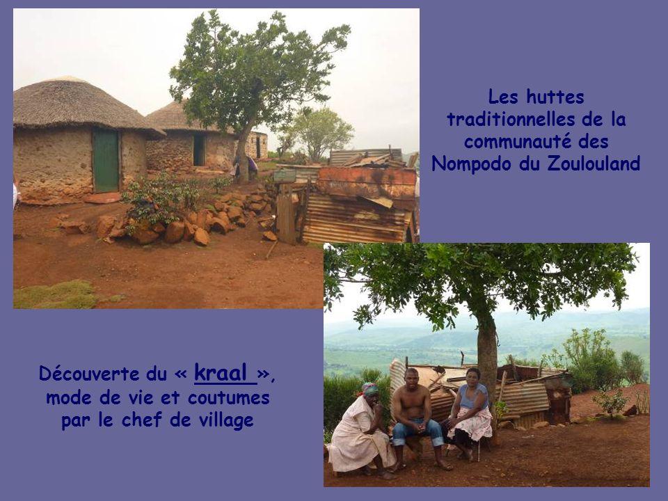 Les huttes traditionnelles de la communauté des Nompodo du Zoulouland