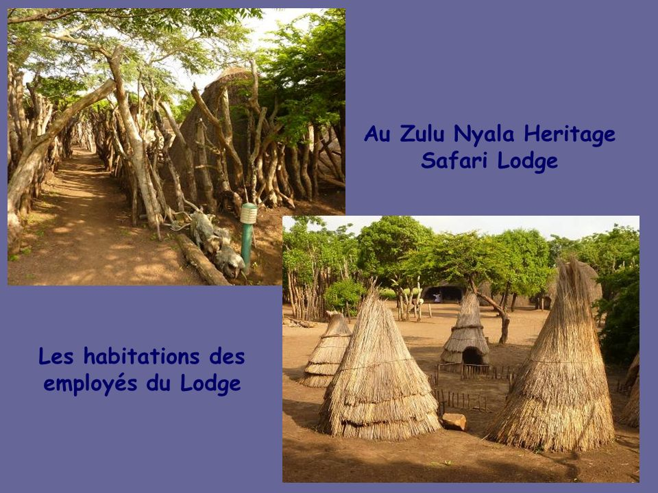 Au Zulu Nyala Heritage Safari Lodge