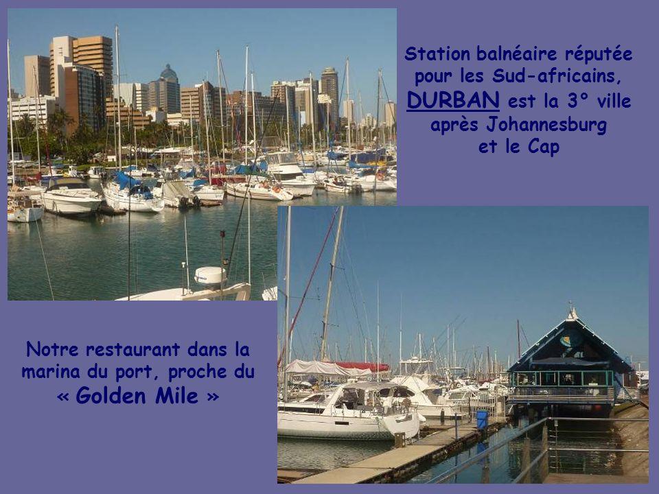 Notre restaurant dans la marina du port, proche du « Golden Mile »