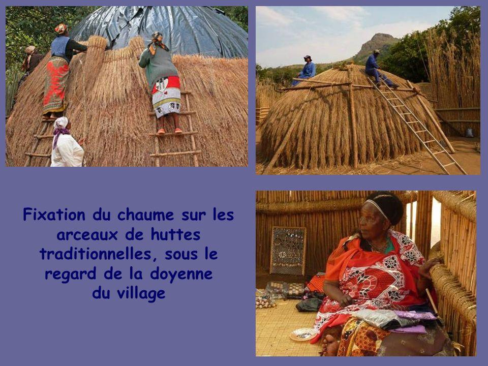 Fixation du chaume sur les arceaux de huttes traditionnelles, sous le regard de la doyenne du village