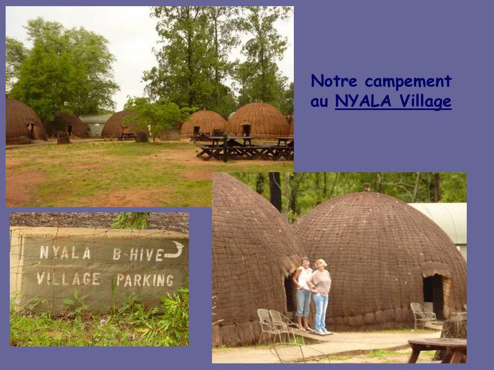 Notre campement au NYALA Village