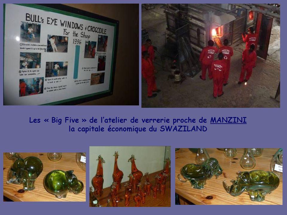Les « Big Five » de l'atelier de verrerie proche de MANZINI la capitale économique du SWAZILAND
