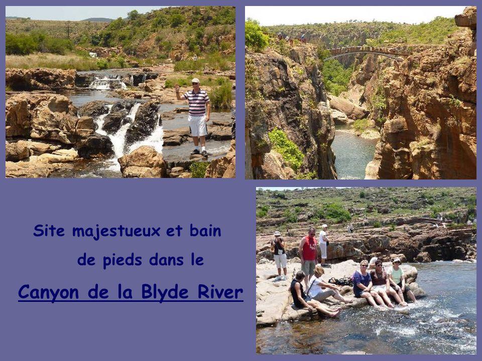 Site majestueux et bain Canyon de la Blyde River