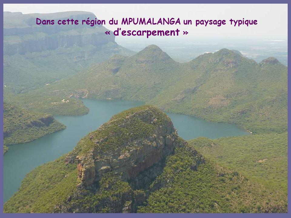 Dans cette région du MPUMALANGA un paysage typique « d'escarpement »