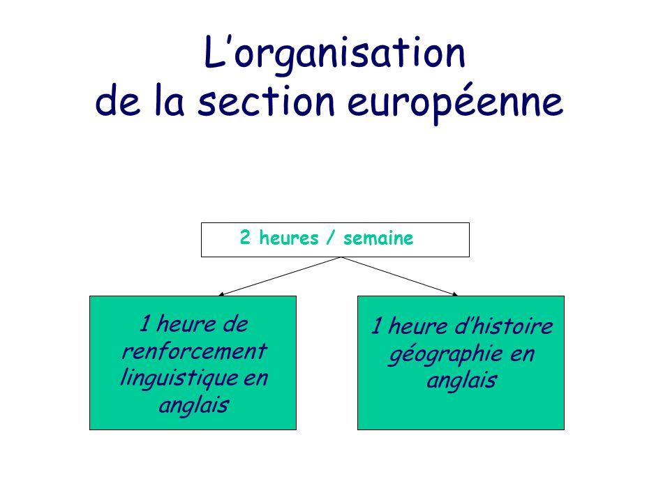 L'organisation de la section européenne