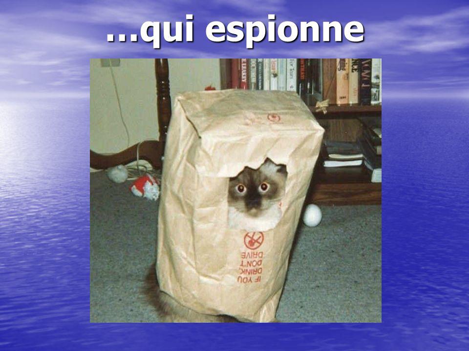 …qui espionne …ridicule