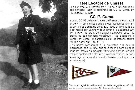 1ère Escadre de Chasse GC I/3 Corse