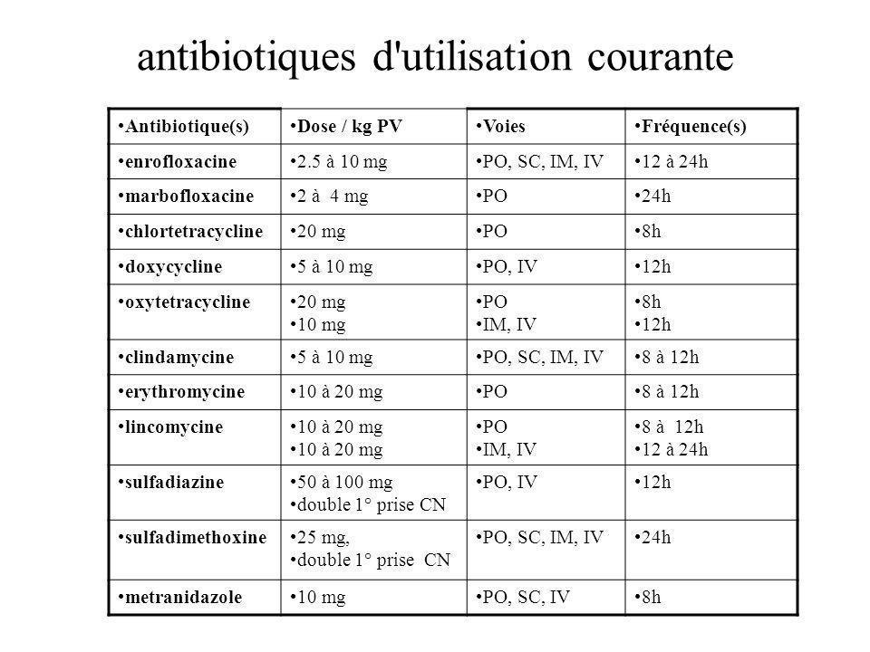 antibiotiques d utilisation courante