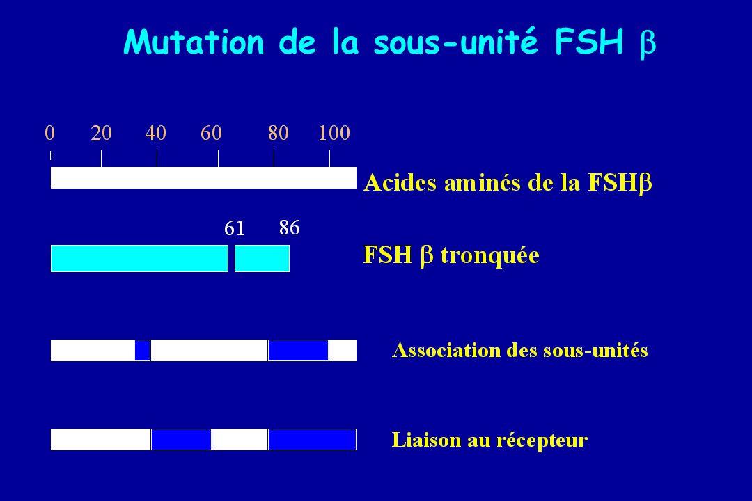 Mutation de la sous-unité FSH 