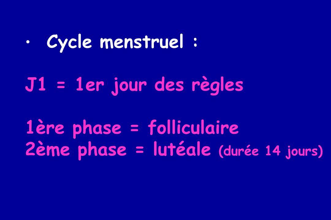 1ère phase = folliculaire 2ème phase = lutéale (durée 14 jours)