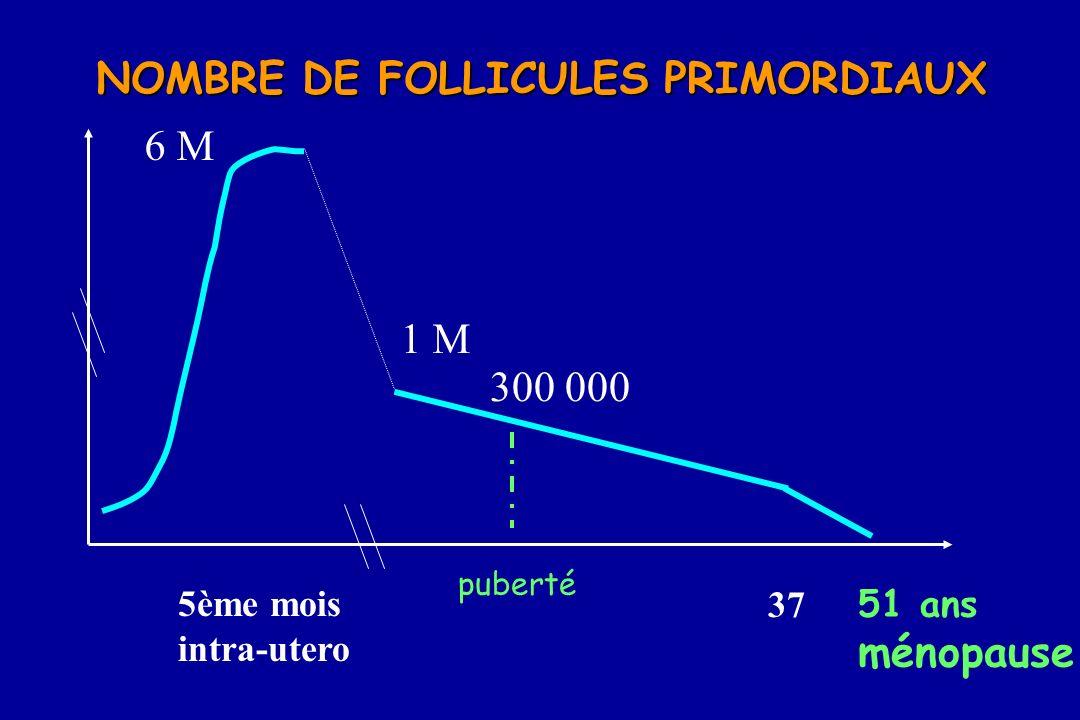 NOMBRE DE FOLLICULES PRIMORDIAUX