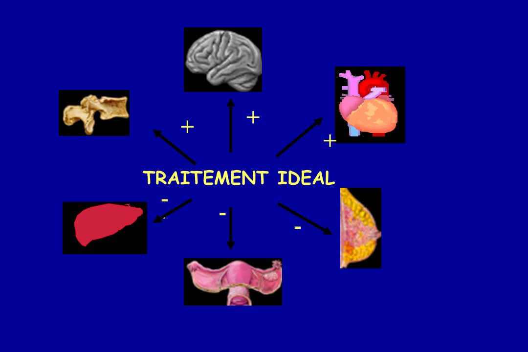 + + + TRAITEMENT IDEAL - - -