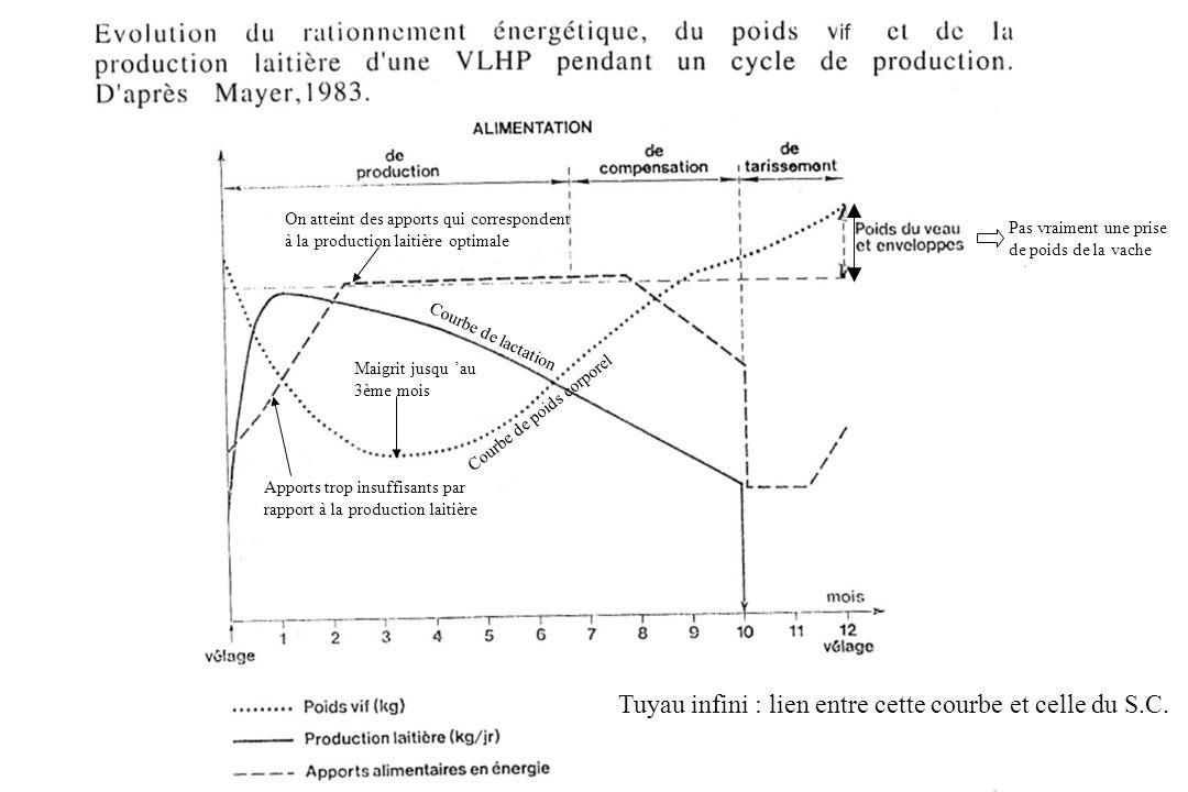 Tuyau infini : lien entre cette courbe et celle du S.C.