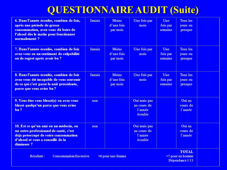 QUESTIONNAIRE AUDIT (Suite)