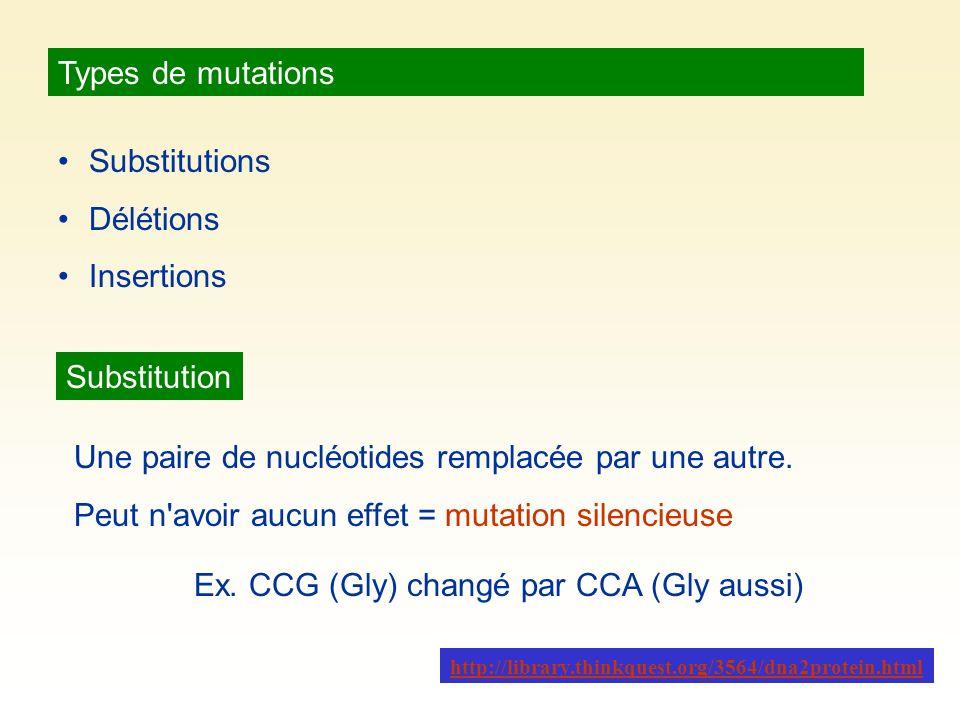 Une paire de nucléotides remplacée par une autre.