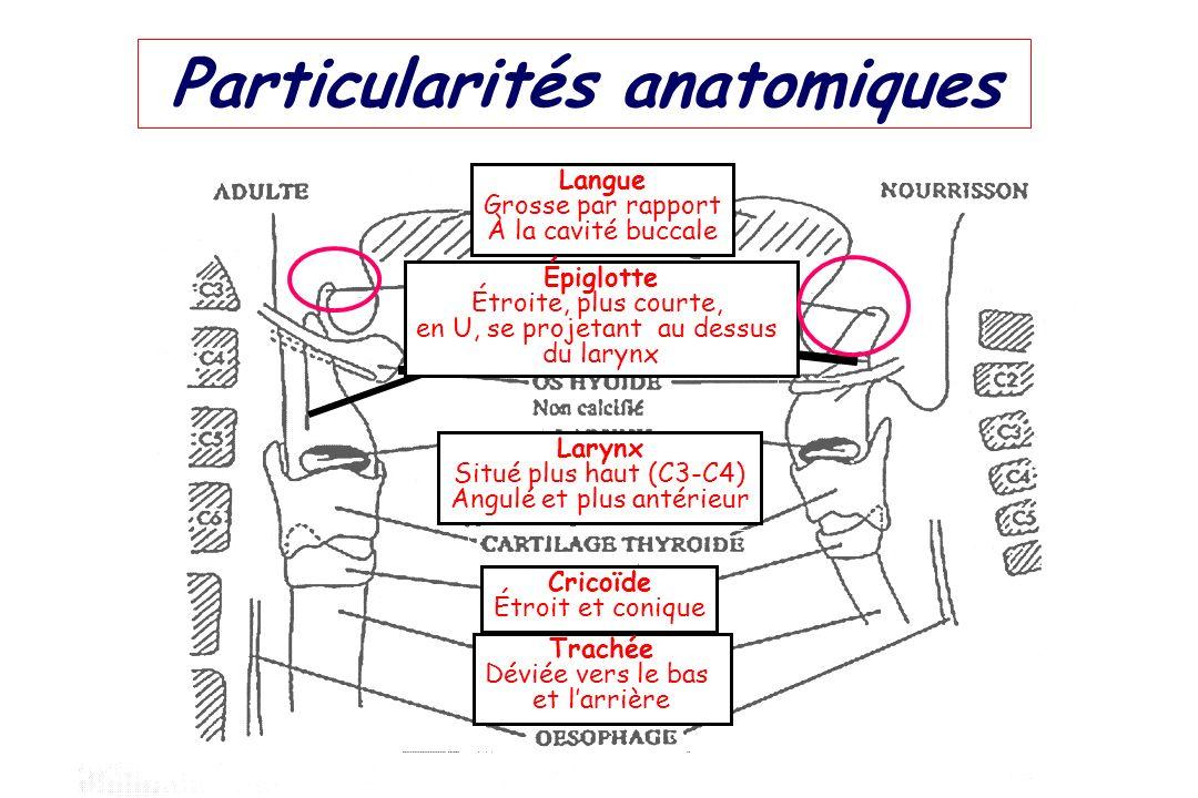Particularités anatomiques