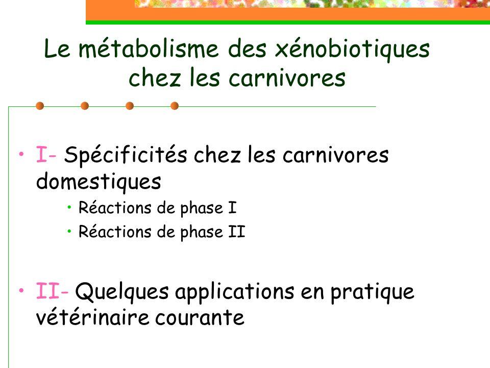 Le métabolisme des xénobiotiques chez les carnivores