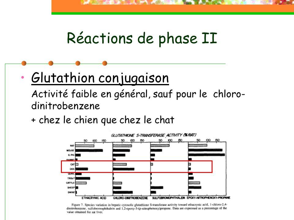 Réactions de phase II Glutathion conjugaison