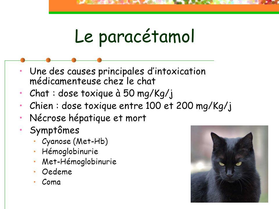 Le paracétamol Une des causes principales d'intoxication médicamenteuse chez le chat. Chat : dose toxique à 50 mg/Kg/j.