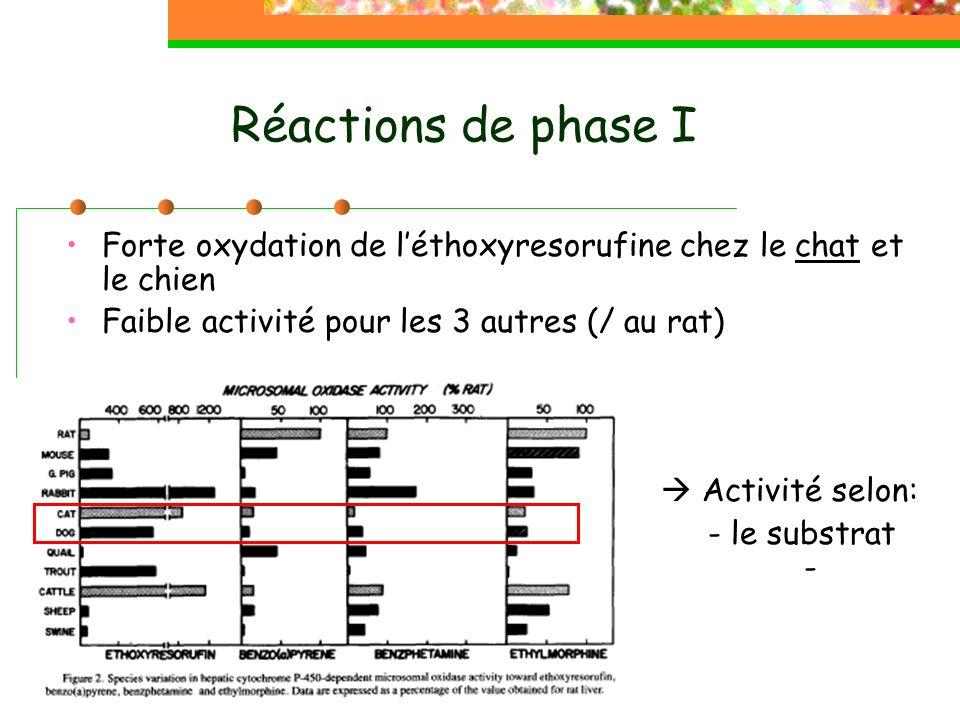 Réactions de phase I Forte oxydation de l'éthoxyresorufine chez le chat et le chien. Faible activité pour les 3 autres (/ au rat)