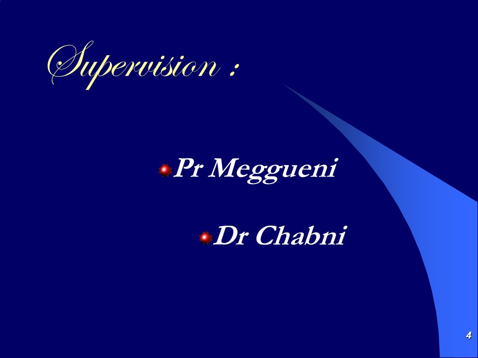 Supervision : Pr Meggueni Dr Chabni