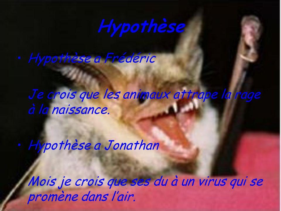 Hypothèse Hypothèse a Frédéric