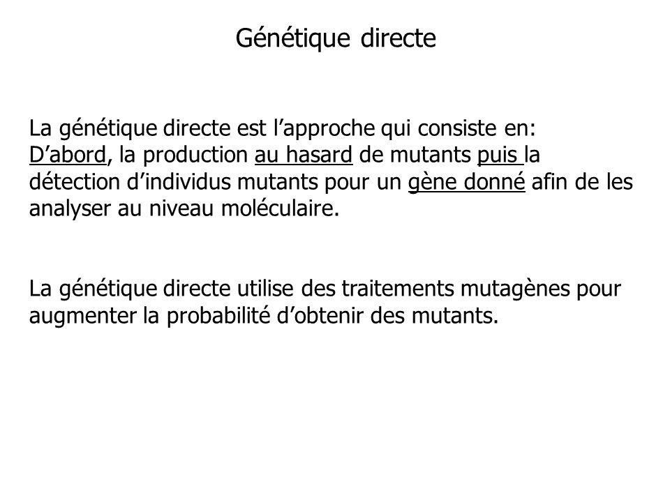 Génétique directe La génétique directe est l'approche qui consiste en: